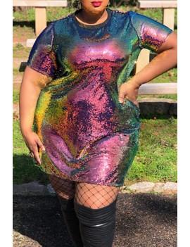 Lovely Casual O Neck Multicolor Plus Size Mini Dress